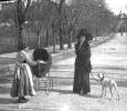 Vile Regina Margherita - Anno 1914 - Anagni (FR)